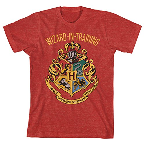 HARRY POTTER Boys Wizard in Training Navy Heather Tee (Large, Red Heather)