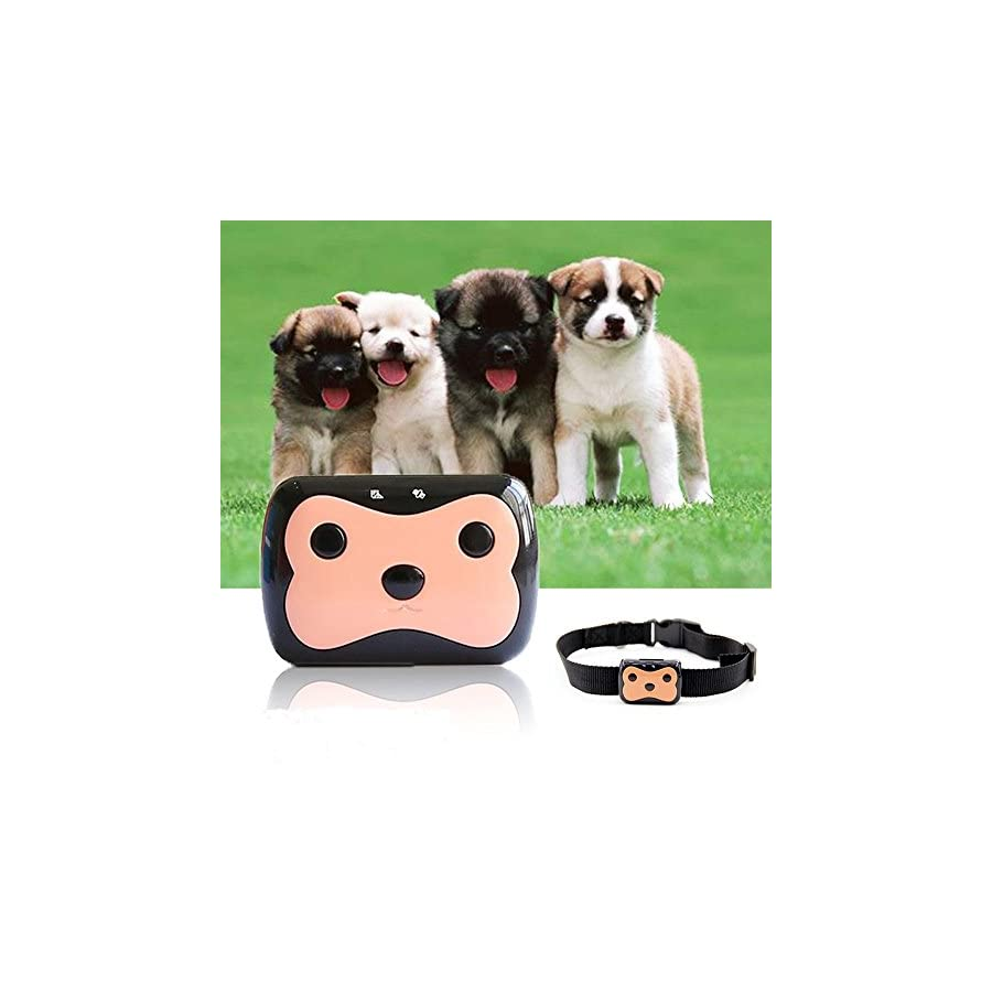 TKSTAR Mini GPS Tracker Collar Anti lost Worldwide GPS Location Waterproof for Small Pet Dogs & Cats, GPRS/GPS/GSM Pet Training Activity Free Online Realtime Tracking Device TK09