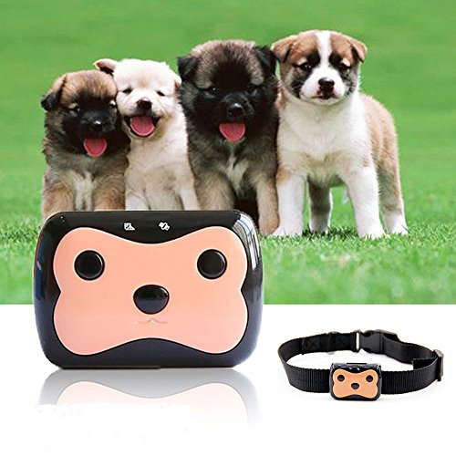 TKSTAR Mini Dog GPS Tracker Collar Anti lost Worldwide GPS Location Waterproof for Small Pet Dogs & Cats, GPRS/GPS/GSM Pet Training Activity Free Online Realtime Tracking Device TK09