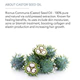 Cold-Pressed Castor Oil for Hair Growth, Face, and...