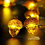 Decorative Lights, Impress Life Acorn Lights String 10 ft Copper Wire 40 LEDs New Battery-powered for Ice Age, Camping, Wedding, Birthday Parties, Bedroom Decorations with Dimmable Remote & Timer