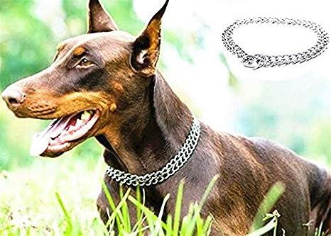 JYHY - Collar para Perro, Cadena en Forma de P y Cadena de Metal ...