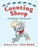 img - for Counting Sheep: A Bedtime Adventure! book / textbook / text book