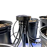 12-Plant Home Grow Kit - Great Starter Hydroponics