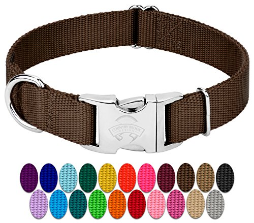 Country Brook Petz | Premium Nylon Dog Collar with Metal Buckle (Medium, 3/4