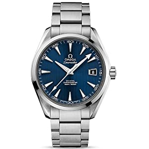 Omega Aqua Terra Mens Watch 231.10.42.21.03.001
