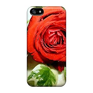 PC For Iphone 5/5S Phone Case Cover With Fashionable Look For Iphone 5/5S Phone Case Cover - Lonely Red Rose