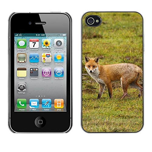 Premio Sottile Slim Cassa Custodia Case Cover Shell // F00005599 Renard rouge // Apple iPhone 4 4S 4G