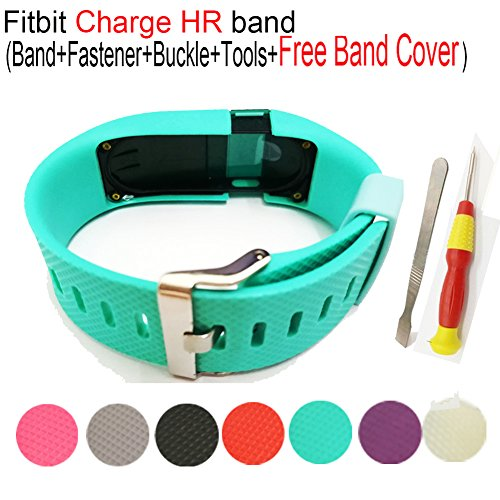 Budesi Replacement Accessories Wristband Teal Small