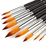 Golden maple Acrylic Paint Brush Set - 9 Taklon Brushes,Long Handle - Ideal Brush Set for Acrylic,Oil, Watercolour, Nail Painting - Perfect for Beginners, Professionals and Artists