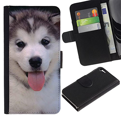 LASTONE PHONE CASE / Luxe Cuir Portefeuille Housse Fente pour Carte Coque Flip Étui de Protection pour Apple Iphone 5 / 5S / Husky Siberian Dog Cute Puppy
