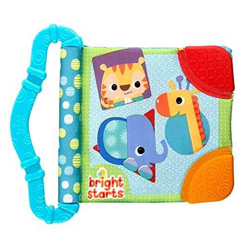 Bright Starts Teethe & Read Toy, Style May Vary