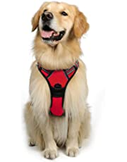 Rabbitgoo Front Range Dog Harness Adjustable Outdoor Pet Vest with Handle Easy Control for Small Medium Large Dogs and Durable Material (Large, Red)