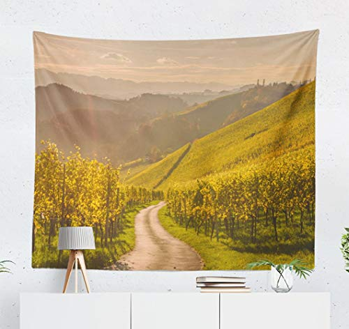 Happyome Summer Tapestry, Wall Hanging Tapestry Tuscany Vineyard Summer Sunset Grape Harvest Wall Tapestry Dorm Home Decor Bedroom Living Room in 80