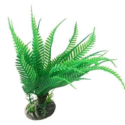 Amazon.com : eDealMax Jardin acuario submarino Adorno de plástico árbol de la planta, Verde : Pet Supplies