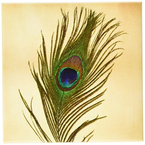 [3dRose cst_172148_3 Elegant Peacock Feather on Gold-Ceramic Tile Coasters, Set of 4] (Peacock Gold Feather Pad)