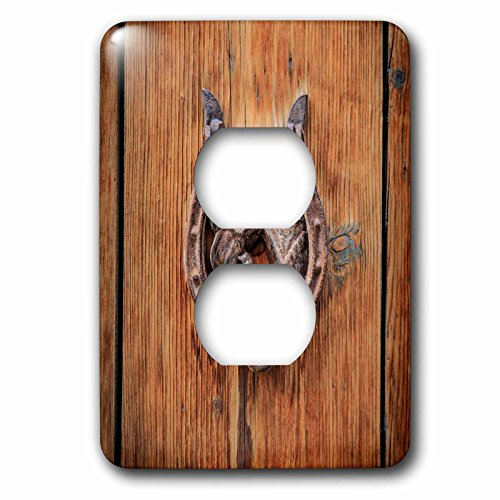 3dRose Danita Delimont - Architecture - Spain, Balearic Islands, Mallorca, door knockers. - Light Switch Covers - 2 plug outlet cover (lsp_277912_6) by 3dRose