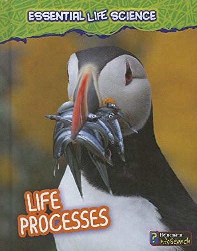 Life Processes (Essential Life Science)