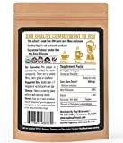 Lions Mane Mushroom Extract Powder by Real Mushrooms - Certified Organic - 60g Bulk Lions Mane Mushroom Powder - Perfect for Shakes, Smoothies, Coffee and Tea