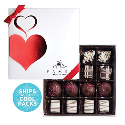 Fames Assorted Chocolate Gift Box - Handcrafted Deluxe Chocolates - Kosher (16 Count)