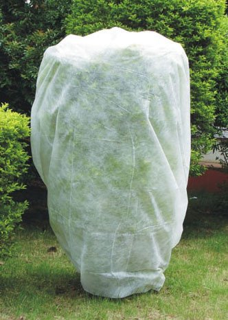 agfabric-warm-worth-plant-cover-for-frost-protection-multi-sizes-for-your-choice-95oz-108x96