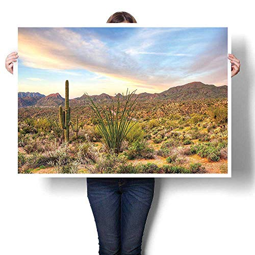 (SCOCICI1588 3D Hand Painting,Decor Collection Sunset at Bartlett Lake Near Phoenix Near Hill Spring Blooming Desert Canvas,Art Modern Abstract Wall Art for Living Room,40