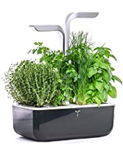 Véritable® - Indoor Vegetable Garden Made in France - Indoor Cultivation with Automatic LED Lighting System - Kit van 4 Lingots® inbegrepen