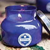 Capri Blue 19oz Jar Candle- Modern Mint