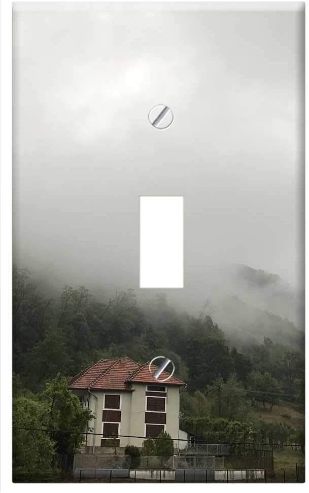 Switch Plate Single Toggle Mist Spooky Transylvania Fog Magic Forest Mystery Amazon Com