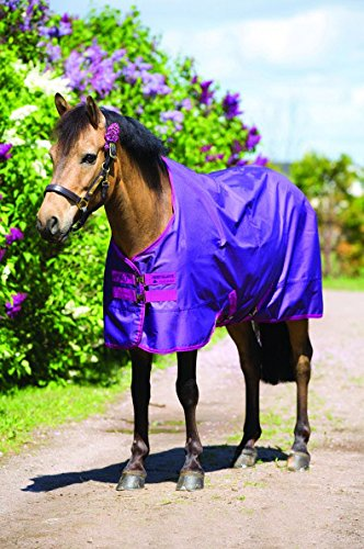 Horseware Amigo Pony Hero-6 Turnout Medium, Berry/Fuchsia - 45_3