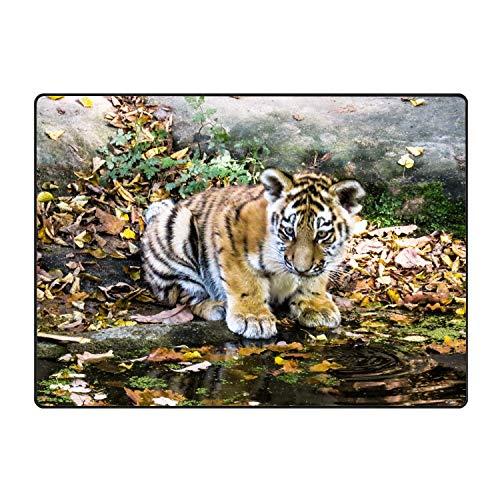 (Floor Mats Cute Tiger Door Mats Hall Rugs Indoor Home Bedroom Kitchen Bathroom Carpet)