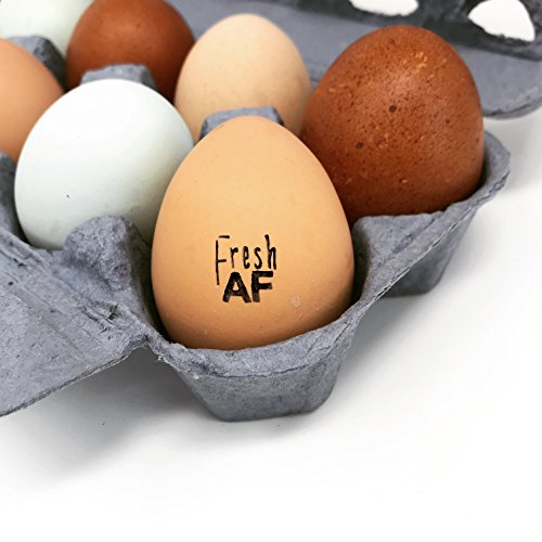 Fresh AF Egg Stamp, Fresh AF Chicken Stamp, Fresh AF, Mini Stamp, Egg Stamp, Wood Stamp, Rubber Stamp, Fresh Eggs Stamp, Fresh Eggs, .5