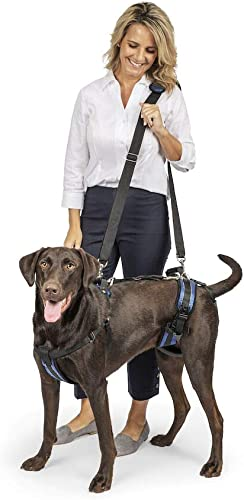 PetSafe-Solvit-CareLift-Lifting-Aid-Harness-for-Dogs