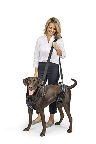 PetSafe Solvit CareLift Lifting Aid Harness