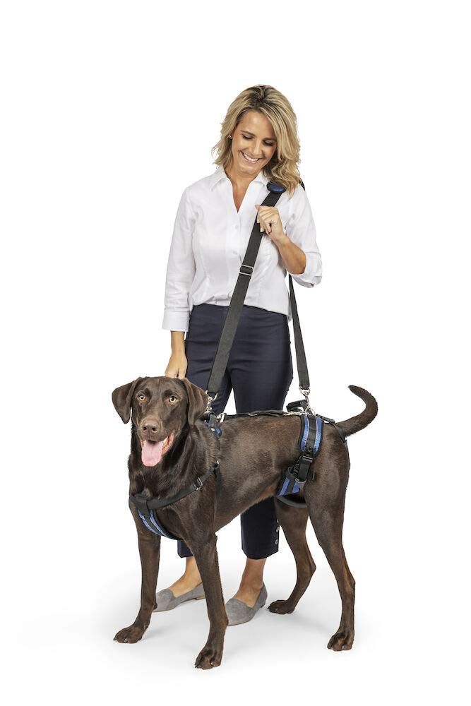 PetSafe CareLift Support Harness - Full Body Lifting Aid with Handle - Great for Pet Mobility and Older Dogs - Comfortable, Breathable Material - Easy to Adjust