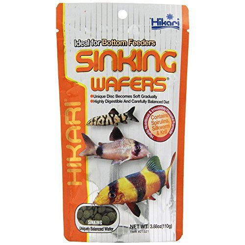 (Hikari Tropical Sinking Wafers for Catfish, Loaches and Bottom Feeders 3.88 Ounces [2-Pack])