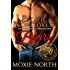 Pacific Northwest Bears: The Rochon Brothers Series: (Shifter Romance)