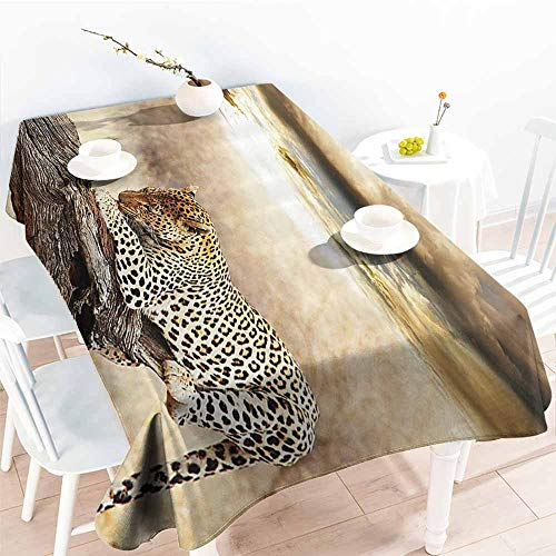 Homrkey Fabric Dust-Proof Table Cover Safari Decor Leopard Resting Under Dramatic Cloudy Sky Africa Safari Wild Cats Nature Picture Print Beige Brown Party W70 xL84