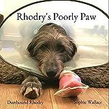 Rhodry's Poorly Paw (Rhodry the Scottish Deerhound)