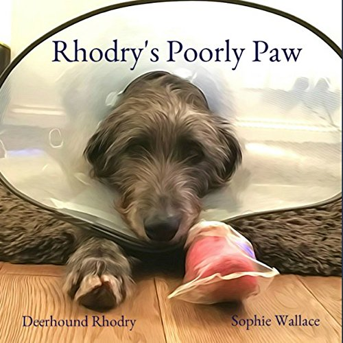 Rhodry's Poorly Paw (Rhodry the Scottish Deerhound)