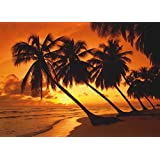 SCHMIDT Puzzle-Tropical Sunset-500 Pieces
