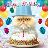 Birthday Card Happy Birthday Funny Animal Grumpy Cat Goggly 3D Moving Eyes by Gogglies