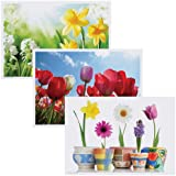 """Hoffmaster 702076 Placemat Multipack, 3 Designs, 14"""" Length x 10"""" Width, Spring (Case of 1000)"""