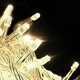 SALCAR LED String (10m) con 100 luci a LED, decorazioni per le feste (bianco caldo)