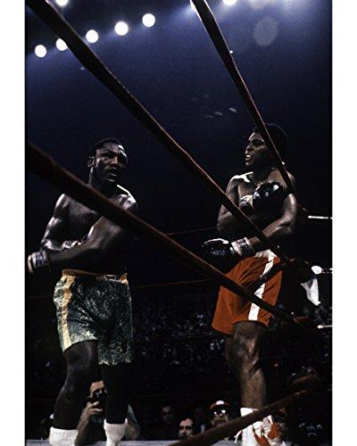 (Globe Photos ArtPrints Muhammad Ali and Joe Frazier in The Boxing Ring - 8