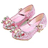 pit4tk Girl's shoes Princess Cosplay Performance Shoes Sequins Dress Shoes Low Heeled (Pink 31/13 M US Little Kid)