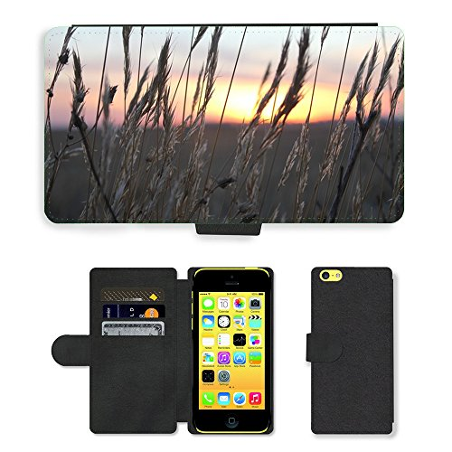 PU Leather Cover Custodia per // M00421772 Sunset blé Spikes Lumière // Apple iPhone 5C