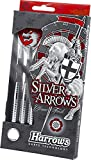 20g Knurled Harrows Eric Bristow Silver Arrows Darts Set