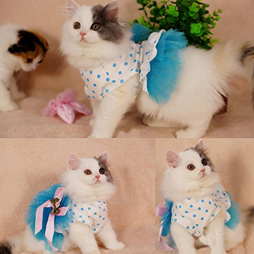i'Pet® Floral Princess Cat Party Dress Small Dog Tutu Ball Gown with Flower Puppy Multi-layer Lace Mesh Skirt with Dot Doggy Photo Apparel Doggie Birthday Stretchy Clothes Spring Summer Holiday Wear with Ribbon Halloween Classics Collection Costume (Blue, X-Large) - Holiday Party Dog Dress
