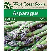 Asparagus Seeds - UC157 F2